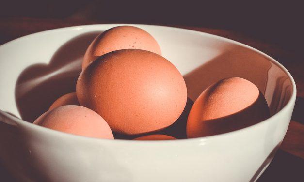 Os ovos devem ser lavados?
