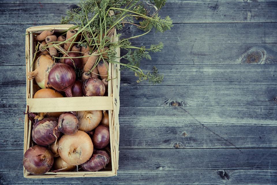 10 atitudes sustentáveis que você pode praticar