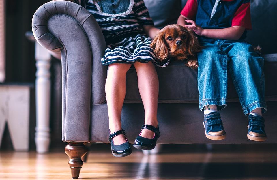 5 segredos de decoração para casa com crianças